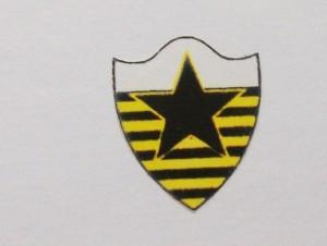 Botafogo Esporte Clube_Teresina 2