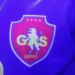 2011-gas